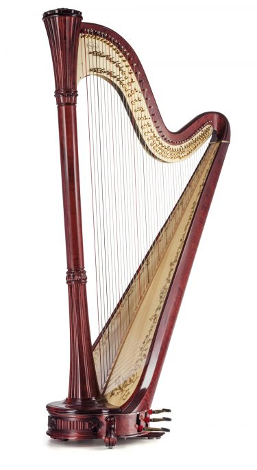 Professional Pedal Harp Collection Salvi Harps