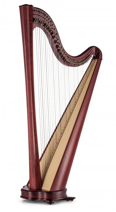 Student Lever Harp Collection - Salvi Harps