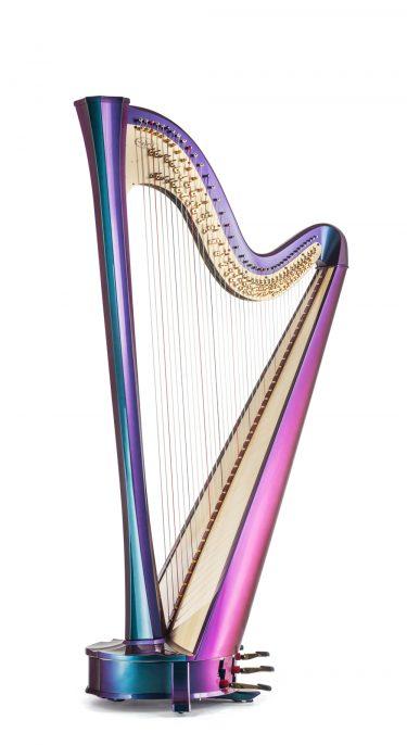 Rainbow 40