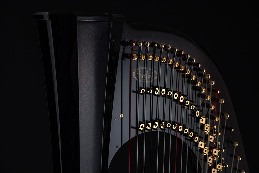 The Dark Side Of The Harp Salvi Harps Pedal Harps Lever Harps