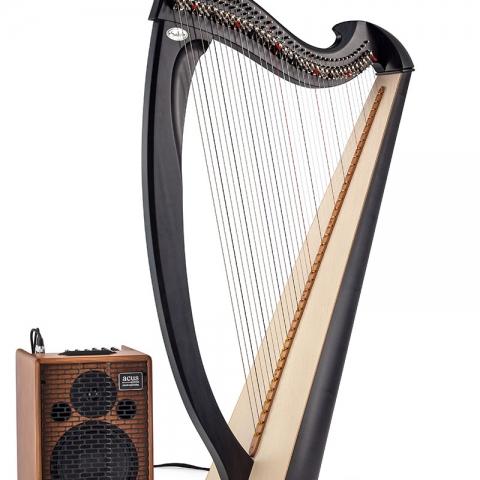 Una Elettro acustica